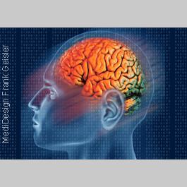Medical Pictures Gehirn, Medical Art von Frank Geisler