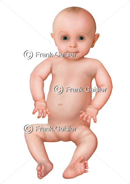 Baby (Säugling) nach der Geburt im ersten Lebensjahr - Medical Pictures