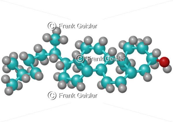 Biochemie Cholesterol, Cholesterin-Molekül - Medical Pictures