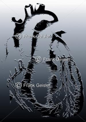 Medical Art menschliches Herz, gläsernes Spiegelherz - Medical Pictures