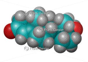 Molekül Hormon Testosteron, Sexualität und Doping - Medical Pictures