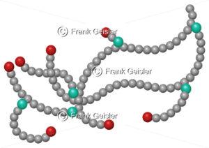 Molekularstruktur Glycogen, Glykogen, Polysaccharid aus Glucose - Medical Pictures