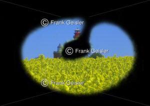Stark eingeschränktes Sehfeld beim Glaukom (Grüner Star) - Medical Pictures